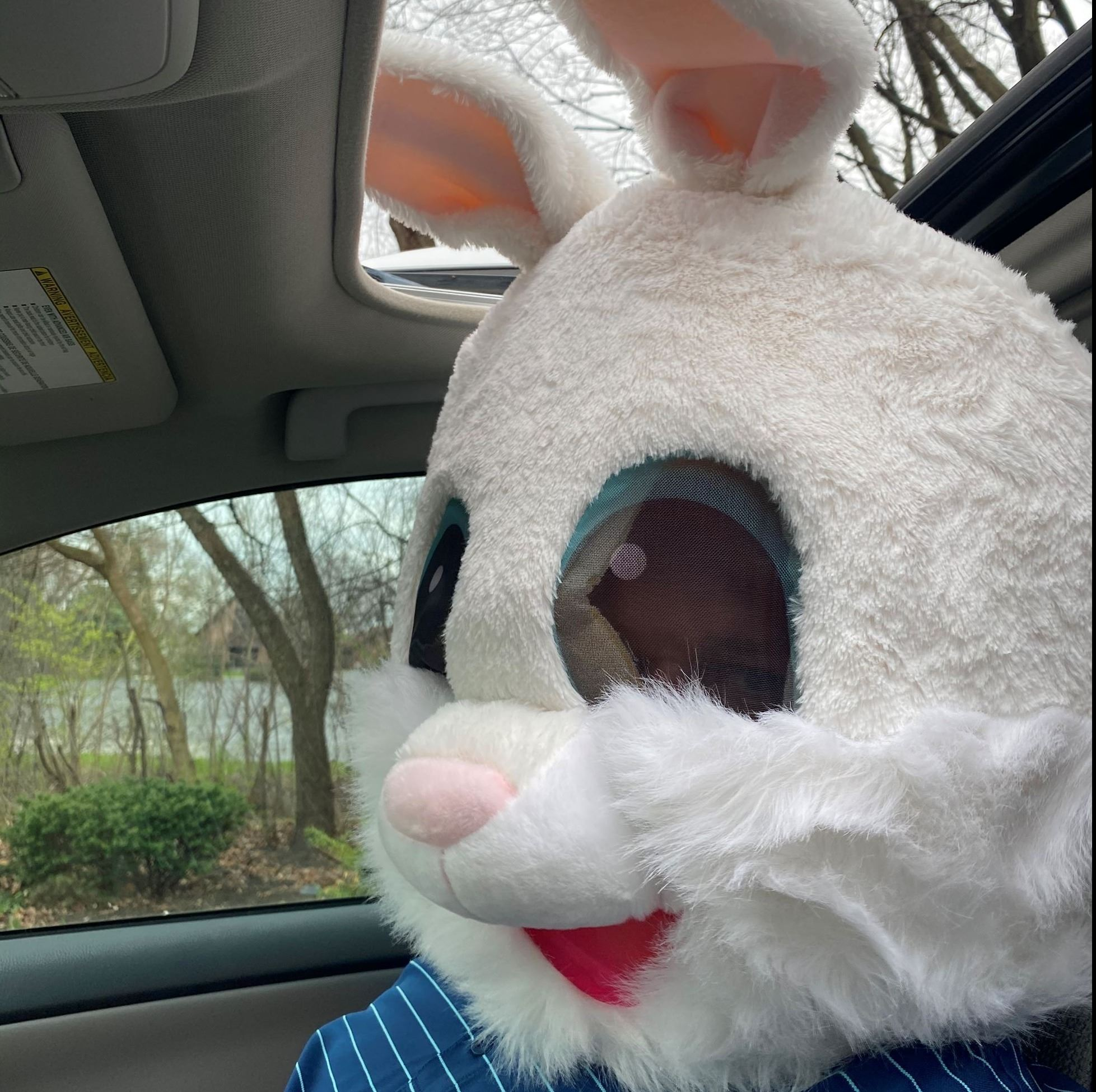 Easter in Glen Ellyn